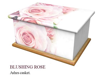 Blushing rose ashes casket